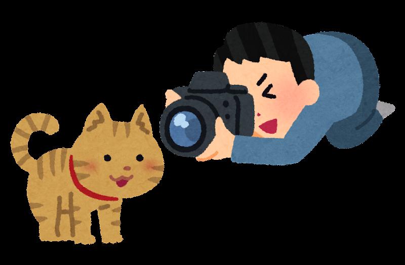 マッチングアプリでモテるプロフィール写真の撮影方法